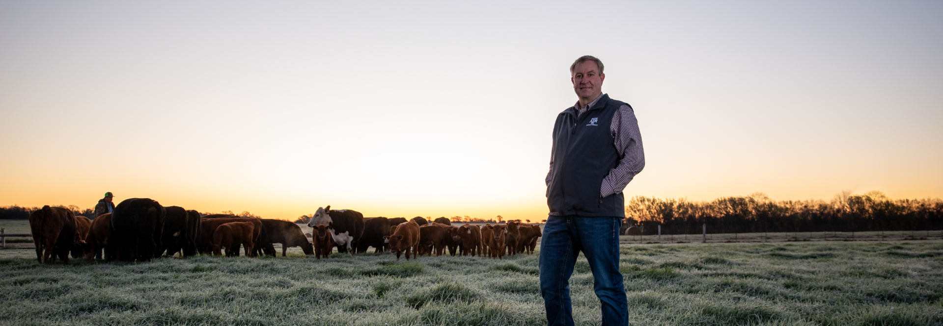 Dr. G. Cliff Lamb, department head of animal science, is helping transform the beef cattle industry to meet global needs.